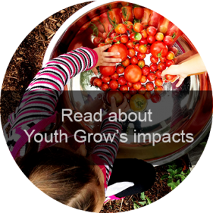 youth-grow-impact-button